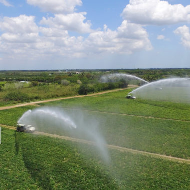 aerial photography agriculture