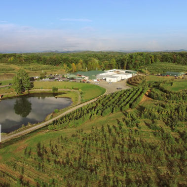 aerial photography orchards